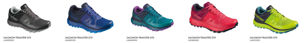 salomon-obzor-trailster-gtx