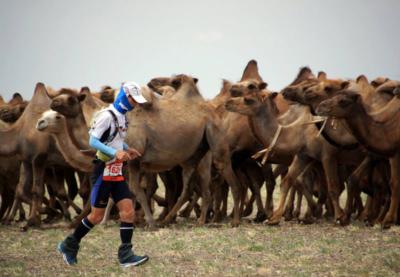 Марафоны мира: Монголия