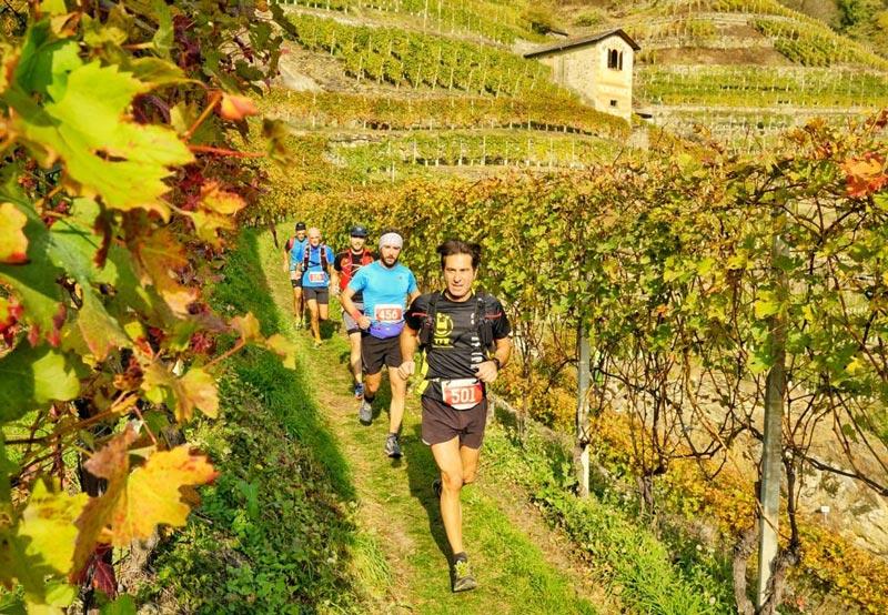 10_wine_races_chianti