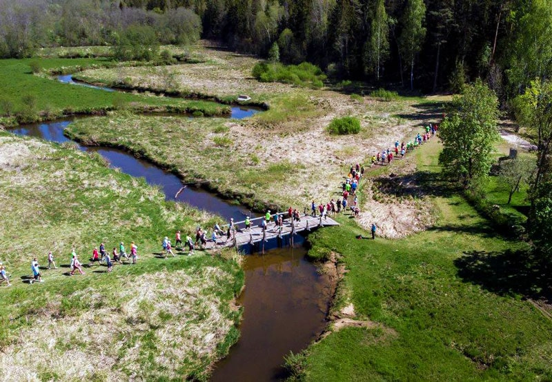 Отчет о Лесном Тарту марафоне: уютный кроссовый старт в ближайшей Европе