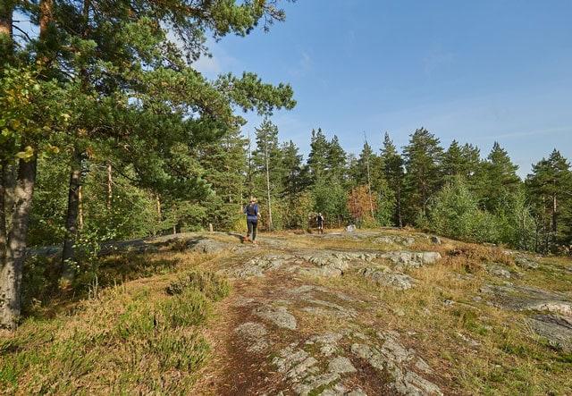 trail-marathons-finland-3