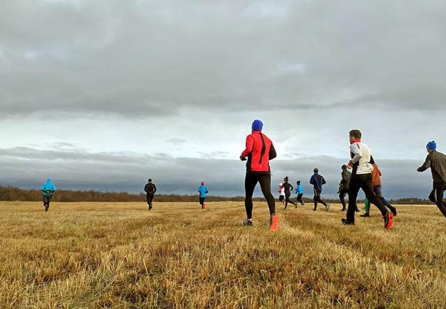 Где побегать в Сыктывкаре: парки и маршруты для пробежки