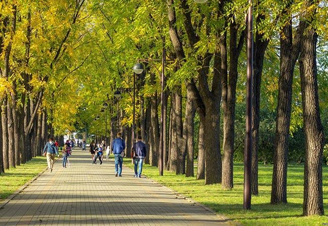 Где побегать в Краснодаре: парки, стадионы, маршруты для пробежки