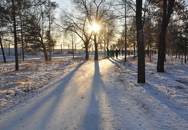 Где побегать в Омске: лучшие места и маршруты для пробежки