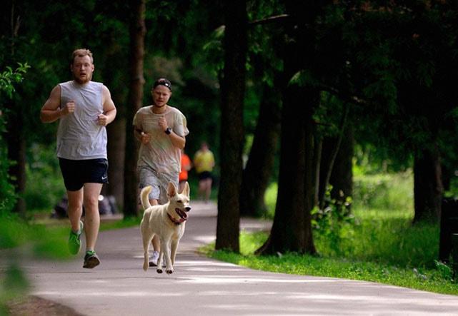 Где побегать в Зеленограде: парки, маршруты, забеги