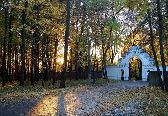Где побегать в Курсе: парки, маршруты, забеги