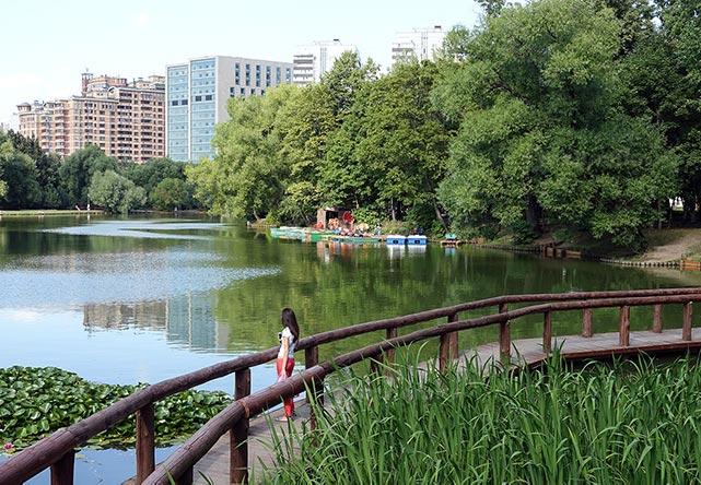 Где побегать в Жуковском: парки, стадионы, городские и трейловые маршруты