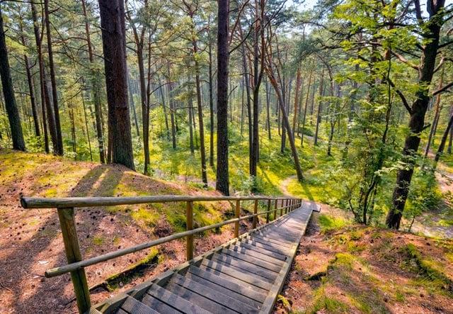 Где побегать в Юрмале: природные зоны, стадионы, популярные забеги